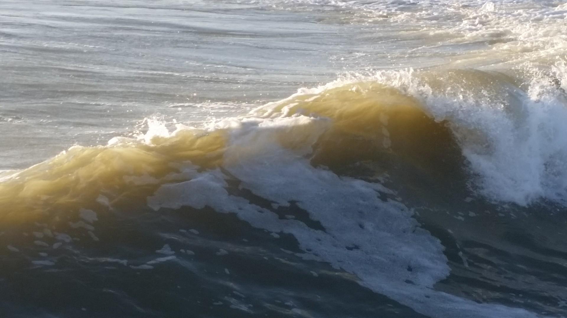 surf report jean de monts base nautique 85 du 2016 01 28 17 00 00