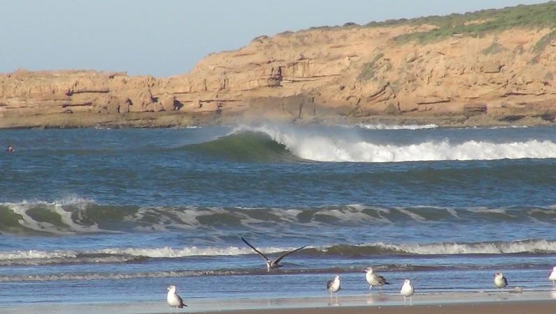 wave report MA, Baie de Tafedna (MA) posté par L'Ane Vert