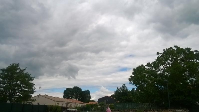 city report FR, Belleville-sur-Vie (85) posté par anonyme