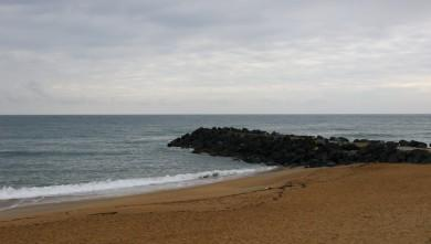 wave Report FR Anglet Sables d'Or le 2016-04-24 09:00:00